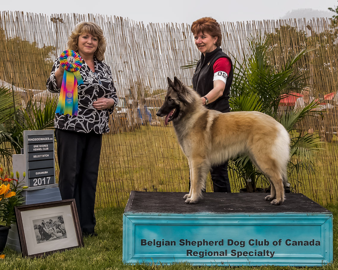 Jaina - Female Select at the Regional Specialty BSDCC - Caledonia 2017