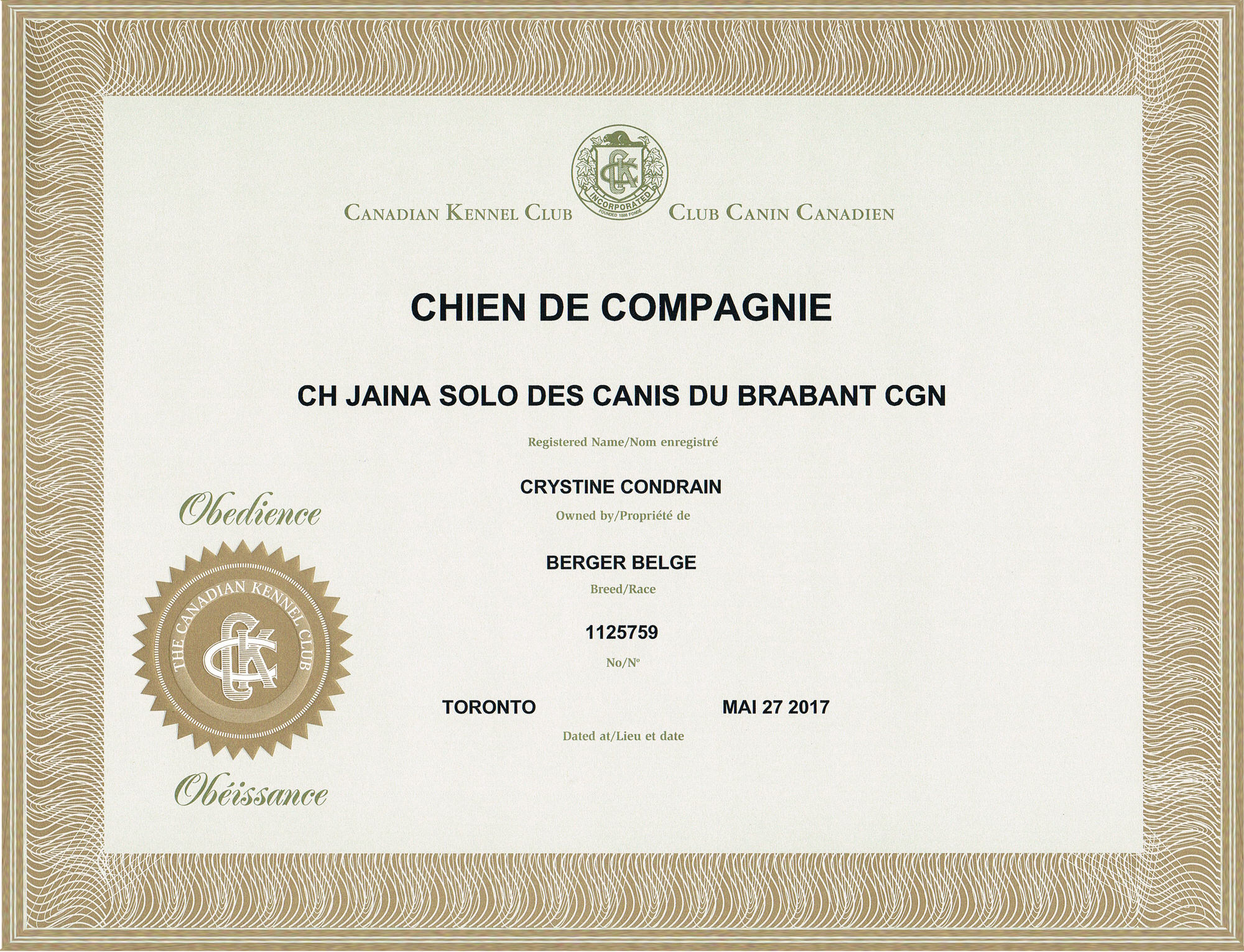 Obedience companion dog title (CKC)