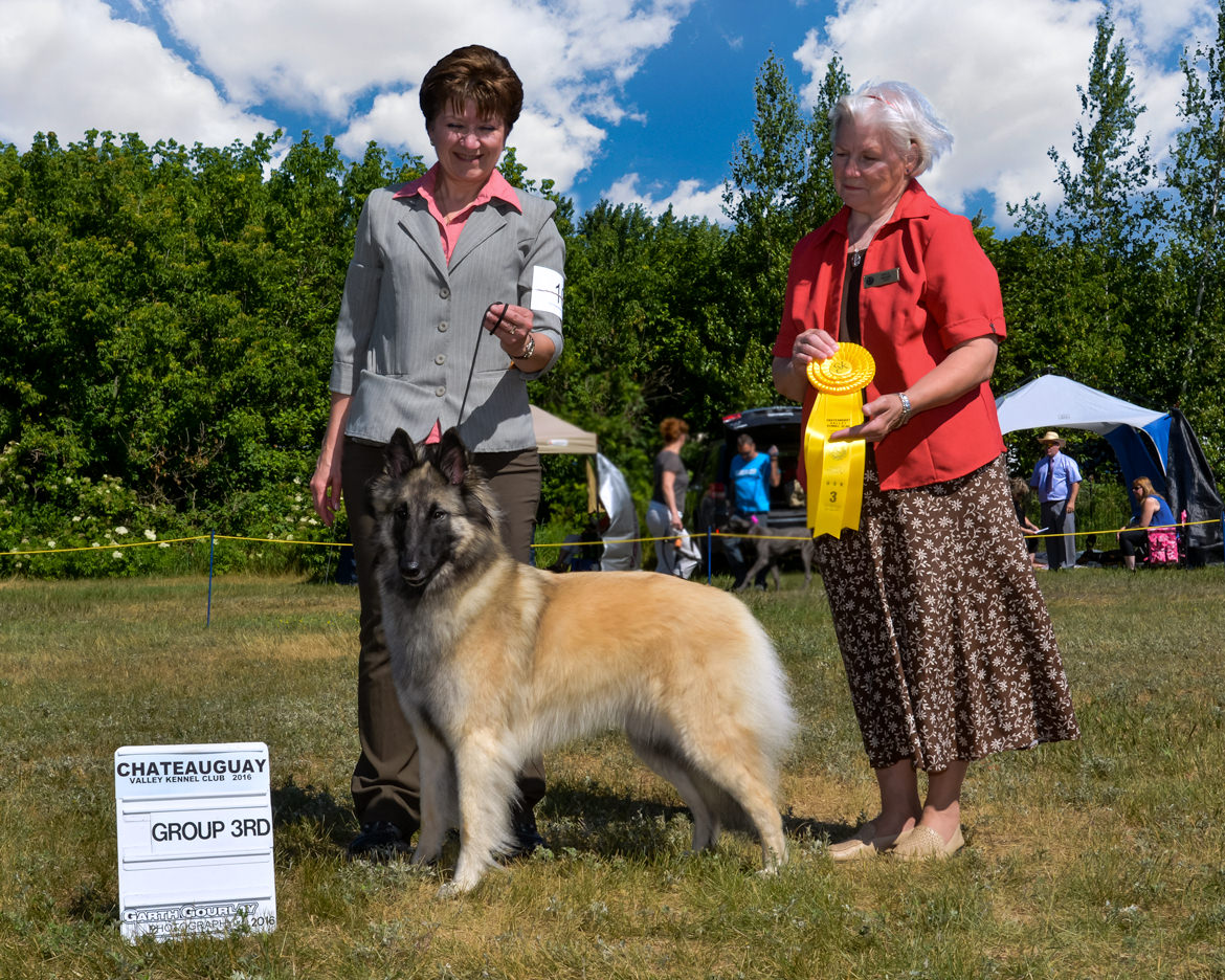 Jaina 3rd in group still in July 2016, under another judge!